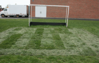 High Traffic Turf Repair